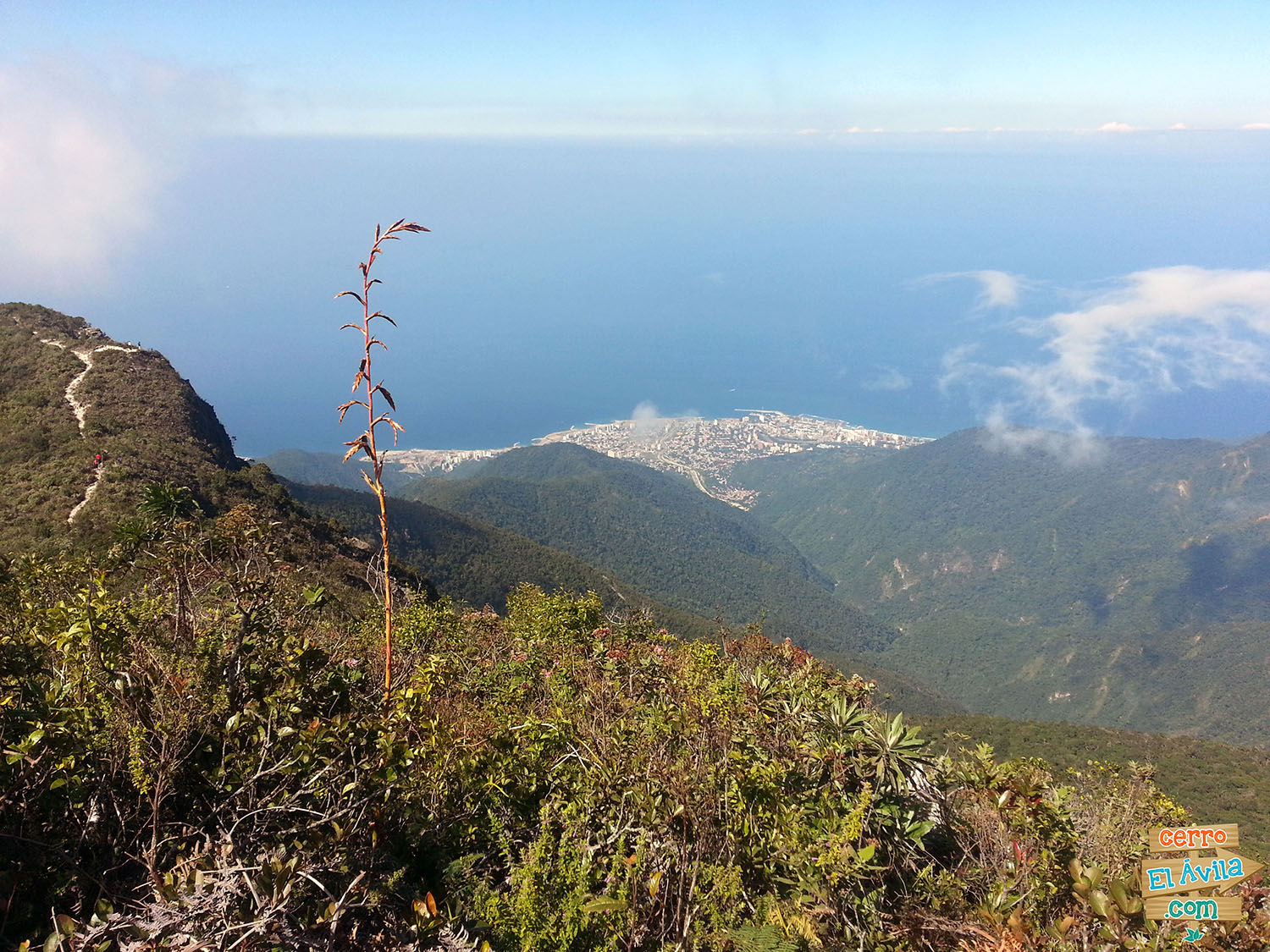 Pico Occidental